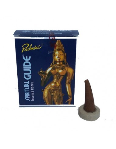 Cono de Incienso Padmini Spiritual Guide